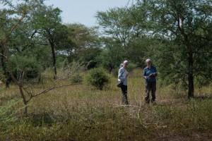 Paleoekologický výzkum