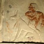 Detail reliéfní výzdoby zádušní kaple soudce Intiho (Abúsír jih). Intiho oblíbený pes, o kterého pečoval trpaslík, se jmenoval Idžem.
