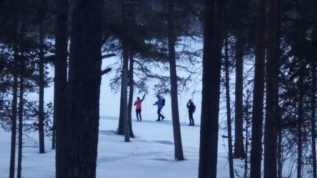 11 Jezero Lankojarvi