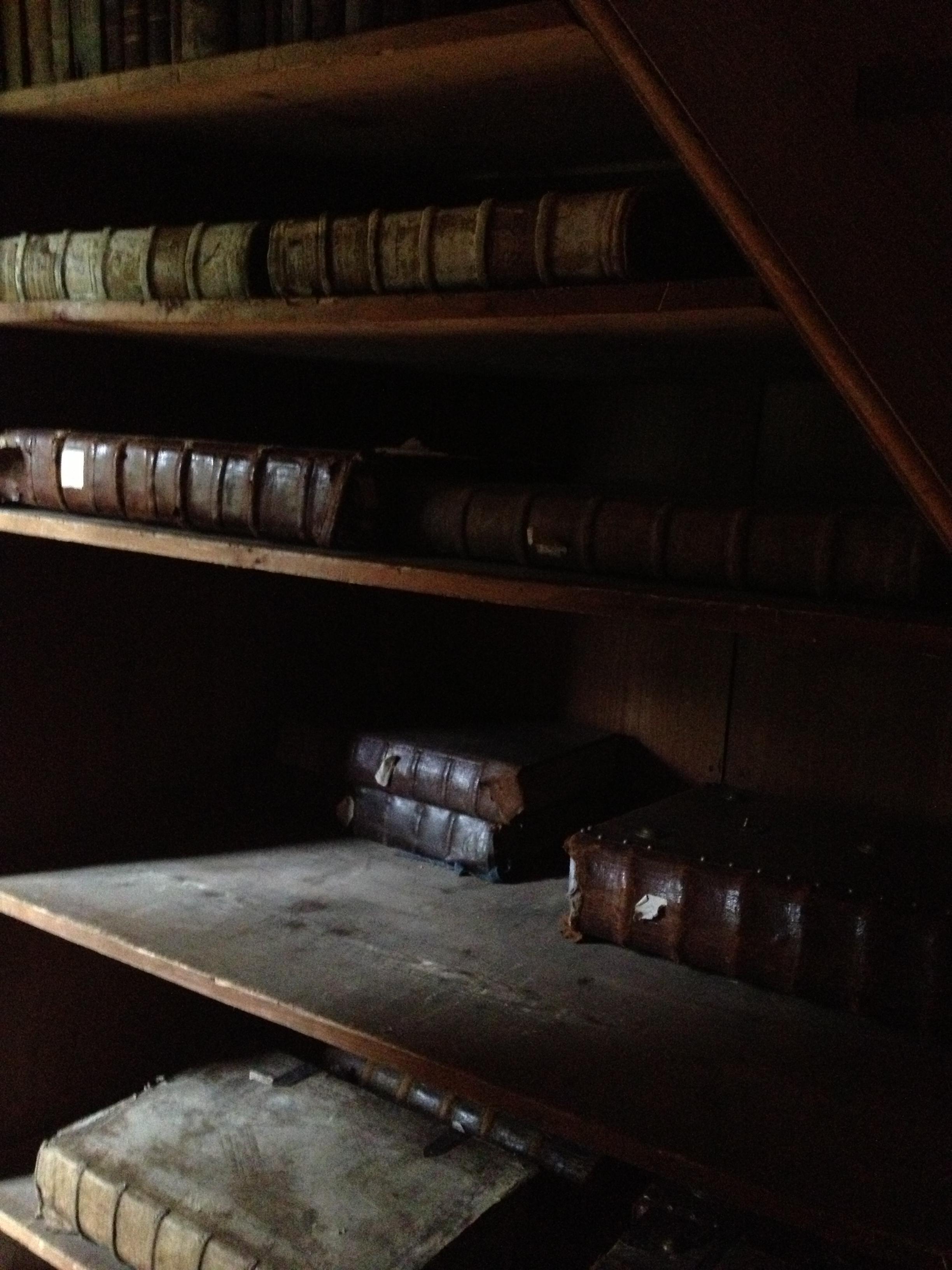 kromeriz library2