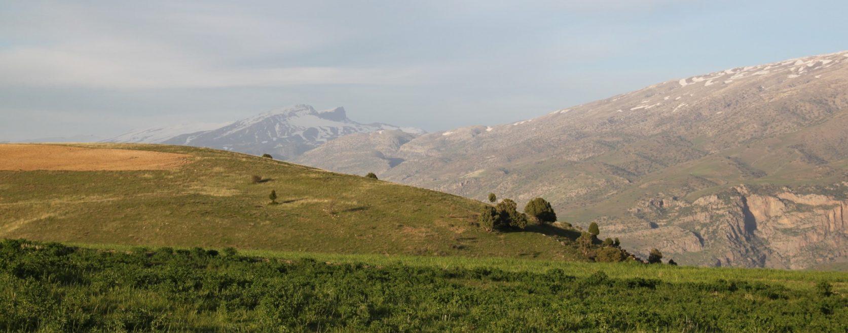 Na hoře Oxyartově